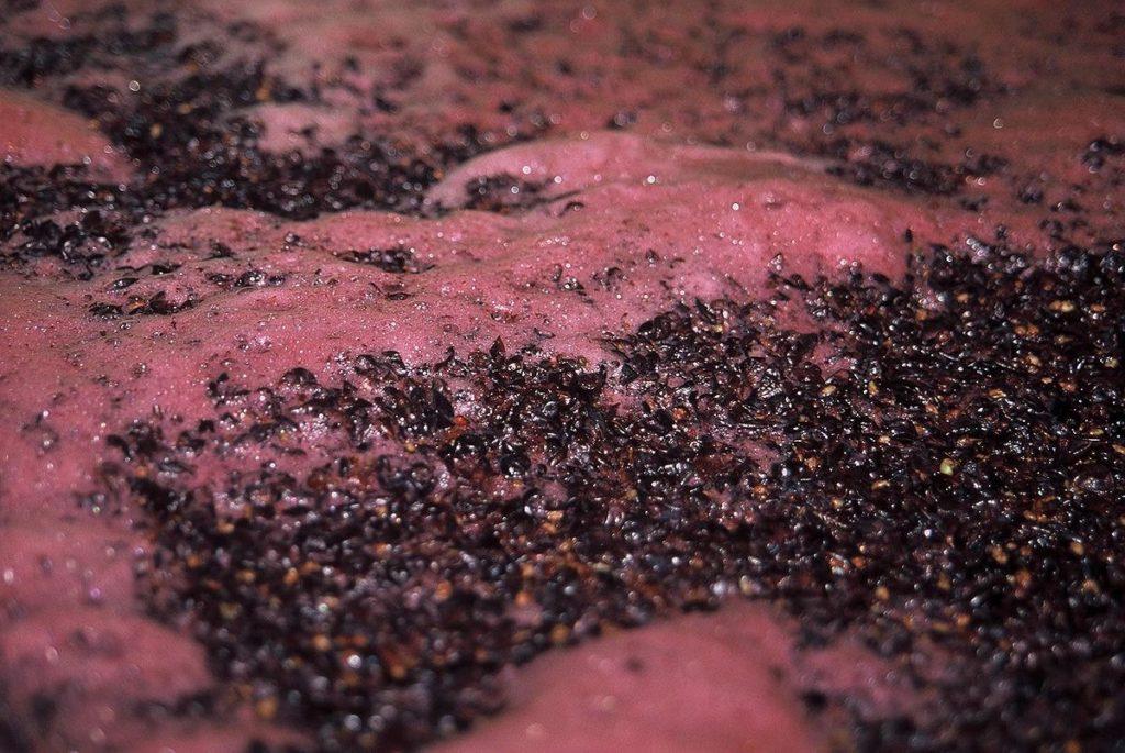 zastala fermentacija problem enolog