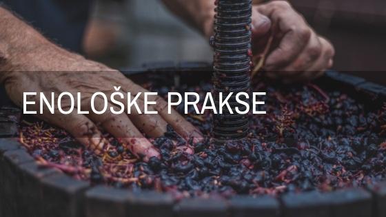Enologija i proizvodnja vina