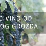 Belo vino od crnog grožđa – 4 stvari koje svaki enolog treba da zna (Infografik)