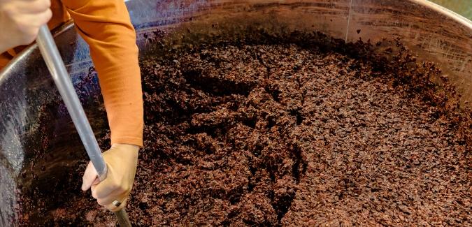 maceracija - greške u proizvodnji vina