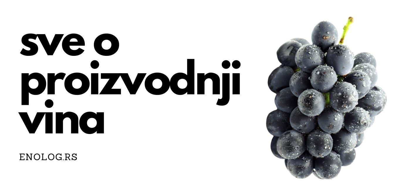 enolog sve o proizvodnji vina slika sa grozom