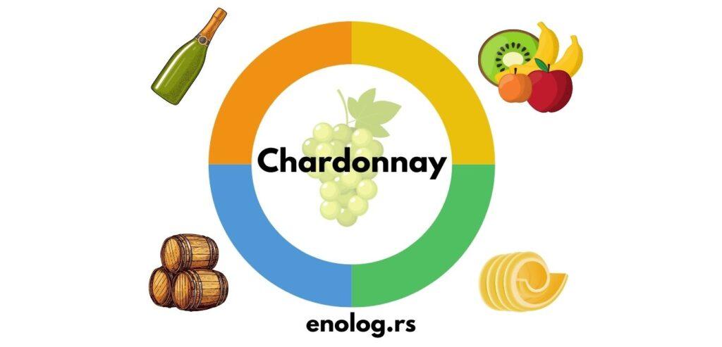 stilovi chardonnay